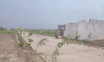 1800 Sq.ft Residential Plot for Sale in Nagla Nagli, Noida