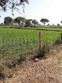 Gallery Cover Image of 100 Sq.ft Residential Plot for buy in Sector 11 for 650000