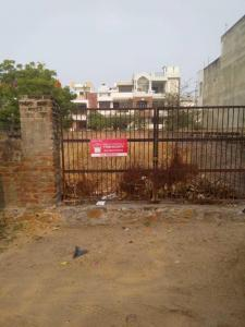 Gallery Cover Image of  Sq.ft Residential Plot for buy in Jagatpura for 7287500