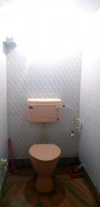 Bathroom Image of PG For Boys in Ultadanga