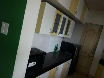 Kitchen Image of Delta PG Magarpatta in Magarpatta City