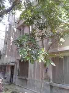 Gallery Cover Image of 1000 Sq.ft 3 BHK Independent Floor for rent in Old Jagacha for 5000