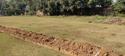 Gallery Cover Image of 4500 Sq.ft Residential Plot for buy in DLF Farms for 22500000