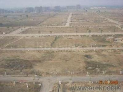 2250 Sq.ft Residential Plot for Sale in Sector 76, Faridabad