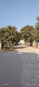 900 Sq.ft Residential Plot for Sale in Burari, New Delhi