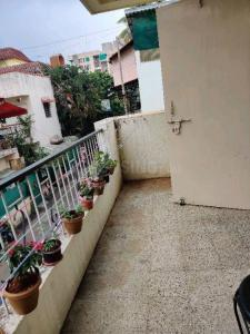 Balcony Image of PG 6566565 Aundh in Aundh