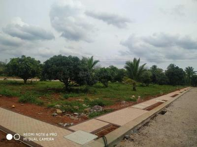 Gallery Cover Image of  Sq.ft Residential Plot for buy in Somasundarapalya for 2600000