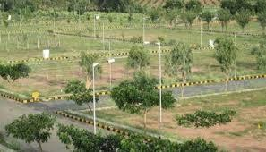 1260 Sq.ft Residential Plot for Sale in Sector 84, Faridabad