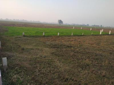 5200 Sq.ft Residential Plot for Sale in Phulwari Sharif, Patna