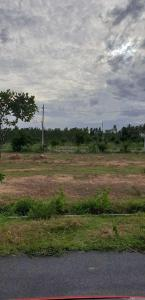 Gallery Cover Image of  Sq.ft Residential Plot for buy in Sarjapur for 4200000
