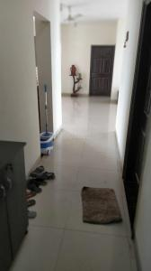 Gallery Cover Image of 2045 Sq.ft 3 BHK Apartment for buy in Omaxe gurgaon The Nile, Sector 49 for 14500000