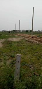50 Sq.ft Residential Plot for Sale in Govindpuram, Ghaziabad