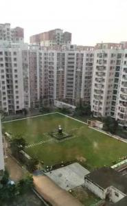 Gallery Cover Image of 1403 Sq.ft 3 BHK Apartment for rent in Duillya for 11000
