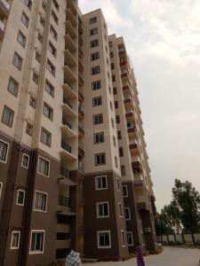 Gallery Cover Image of 1560 Sq.ft 3 BHK Apartment for rent in Confident Leo, Carmelaram for 33000