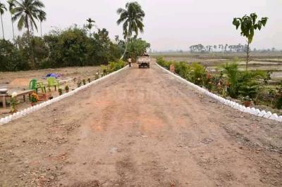 Gallery Cover Image of  Sq.ft Residential Plot for buy in Shyamnagar for 1400000