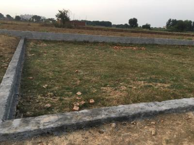 60 Sq.ft Residential Plot for Sale in Ecotech III, Greater Noida
