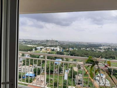 Gallery Cover Image of 1300 Sq.ft 2 BHK Apartment for rent in Purva Palm Beach, Kyalasanahalli for 25000