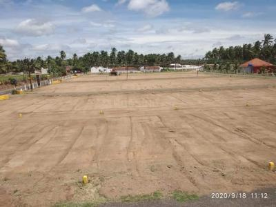 1750 Sq.ft Residential Plot for Sale in Pollachi Railway Junction, Pollachi