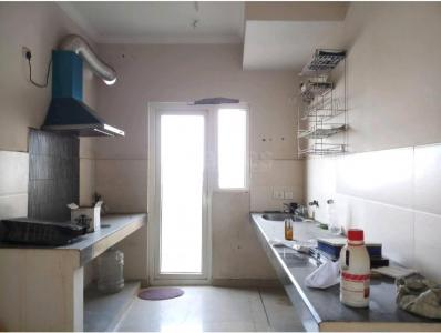 Gallery Cover Image of 925 Sq.ft 2 BHK Apartment for rent in Paras Tierea, Sector 137 for 12500