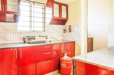Kitchen Image of PG 4642333 Whitefield in Whitefield