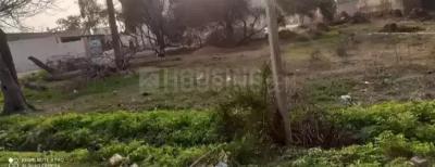 2000 Sq.ft Residential Plot for Sale in Khanna, Ludhiana