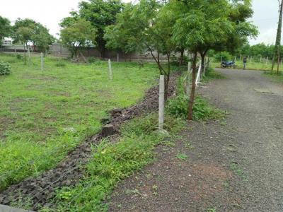 Gallery Cover Image of  Sq.ft Residential Plot for buy in Wagholi for 8100000