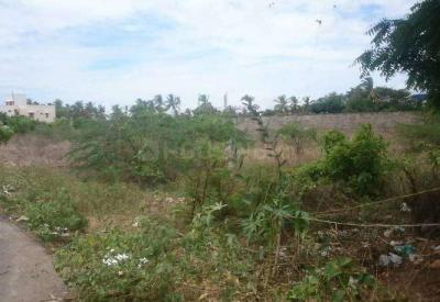 Gallery Cover Image of  Sq.ft Residential Plot for buy in Karuparayanpalayam for 13500000