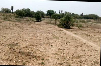 Gallery Cover Image of  Sq.ft Residential Plot for buy in RS Puram for 292500000