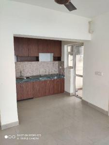 Gallery Cover Image of 850 Sq.ft 2 BHK Apartment for rent in Sector 151 for 7000