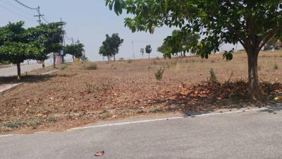 Gallery Cover Image of  Sq.ft Residential Plot for buy in Hampa Pura for 4231300