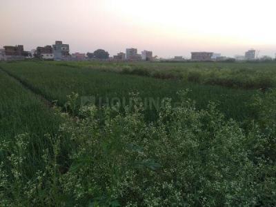 1200 Sq.ft Residential Plot for Sale in Paijawa, Patna