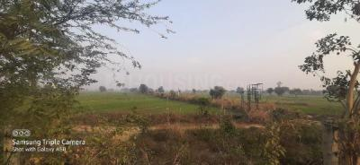 162 Sq.ft Residential Plot for Sale in Noida Extension, Greater Noida