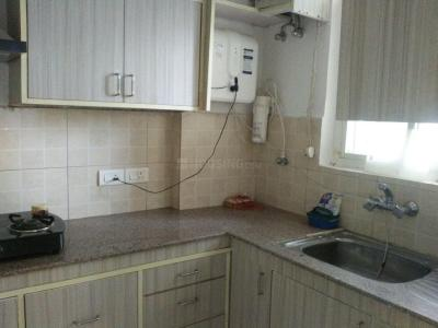 Gallery Cover Image of 1040 Sq.ft 2 BHK Apartment for rent in Omicron III Greater Noida for 10000