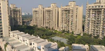 Gallery Cover Image of 1765 Sq.ft 3 BHK Apartment for rent in Chi IV Greater Noida for 14000