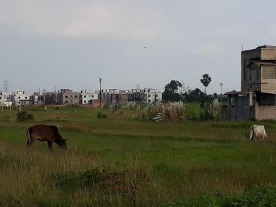 Gallery Cover Image of  Sq.ft Residential Plot for buy in Bidhannagar for 700000