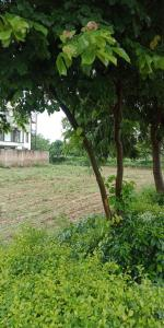 2000 Sq.ft Residential Plot for Sale in DLF Phase 1, Gurgaon