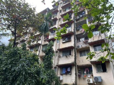 Gallery Cover Image of 400 Sq.ft 1 RK Apartment for buy in Kelipada, Kandivali East for 5500000