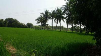 8093 Sq.ft Residential Plot for Sale in Raghunathapally, Hyderabad