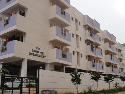 Gallery Cover Image of 1001 Sq.ft 2 BHK Apartment for rent in Oceanus Lilly, Ramamurthy Nagar for 17500