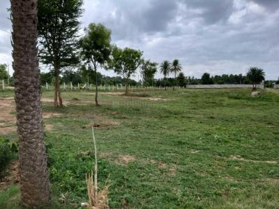 Gallery Cover Image of  Sq.ft Residential Plot for buy in Nettigere for 550000