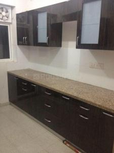 Gallery Cover Image of 1450 Sq.ft 3 BHK Apartment for rent in Sector 77 for 20000