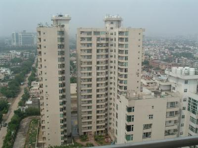 Gallery Cover Image of 2450 Sq.ft 3 BHK Apartment for rent in Sector 31 for 80000
