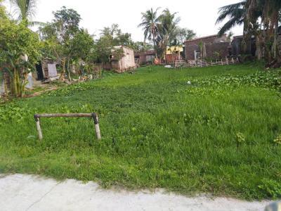 4400 Sq.ft Residential Plot for Sale in Mukundapur, Kolkata