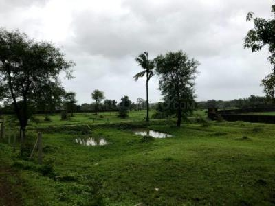 21000 Sq.ft Residential Plot for Sale in Manor, Palghar
