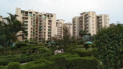 Gallery Cover Image of 2525 Sq.ft 4 BHK Apartment for rent in PI Greater Noida for 26000
