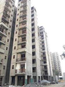 Gallery Cover Image of 357 Sq.ft 1 BHK Apartment for buy in Auric City Homes, Sector 82 for 1350000
