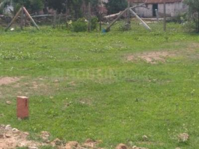 Gallery Cover Image of  Sq.ft Residential Plot for buy in Veppampattu for 480000