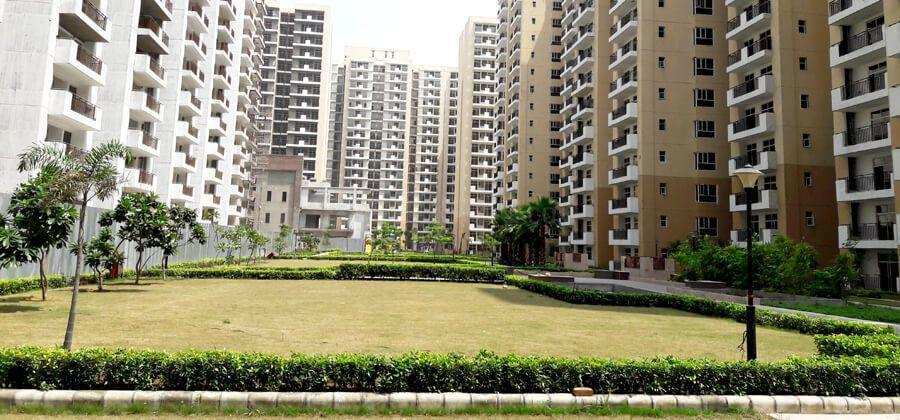 Garden Area Image of 1350 Sq.ft 3 BHK Apartment for buy in Yeida for 3899999