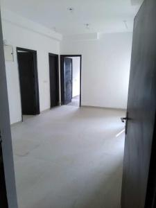 Gallery Cover Image of 1245 Sq.ft 3 BHK Apartment for rent in Noida Extension for 9000