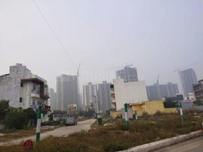 250 Sq.ft Residential Plot for Sale in Sector 128, Noida